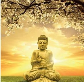 CD Buddha Card 3